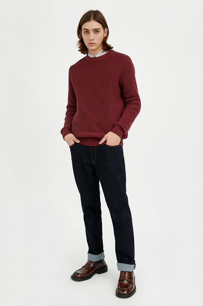 Джемпер мужской, Модель A20-21107, Фото №3