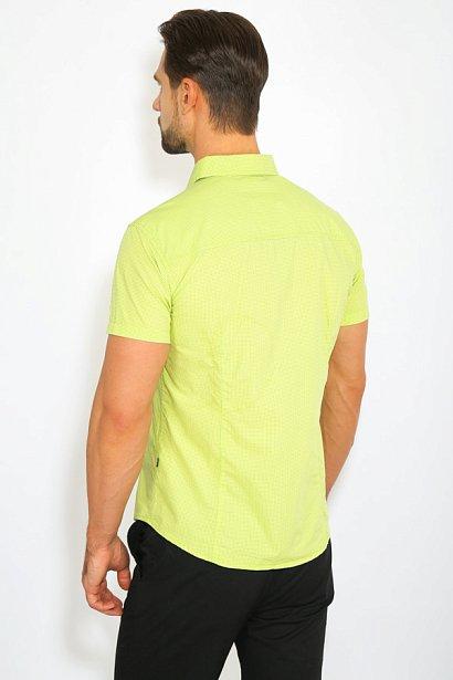 Рубашка мужская, Модель B17-42014, Фото №4