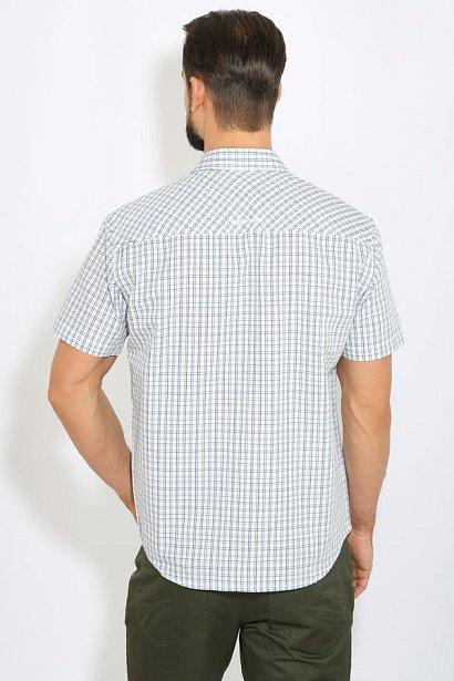 Рубашка мужская, Модель B17-42016, Фото №4