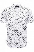 Рубашка мужская, Модель S17-24038, Фото №1