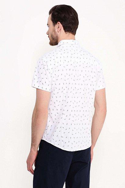 Рубашка мужская, Модель S17-24016, Фото №4